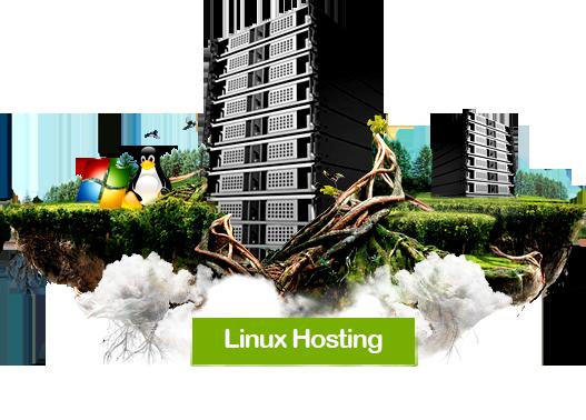 inet-linux-hosting