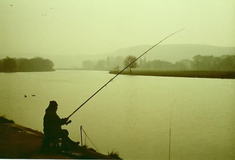 5 bài học Kinh doanh từ câu chuyện Mở ao câu cá giải trí